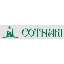 Vin Cotnari Eticheta Galbena Alb Demisec 15 L